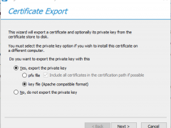071819 1900 HowtoConver6 240x180 - How to Convert Windows SSL certificate PFX Format to PEM Format #WINDOWSSERVER #MVPHOUR @Digicert