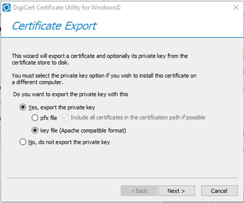 012920 0011 HowtoInstal6 - How to Install IIS SSL Certificate for Citrix NetScaler #Citrix #IIS #SSL #Certificate #NetScaler #Digicert #mvphour